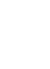 BURGER BIG MOUNTAIN